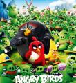 ����� Angry Birds …