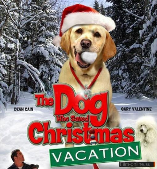 смотреть про собак онлайн фильм бесплатно:
