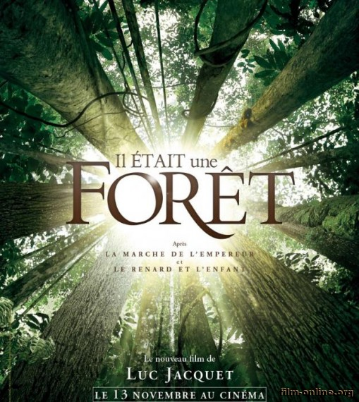 ������� � ���� / Once Upon a Forest (2013)