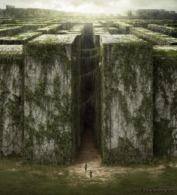 ������� � ��������� / The Maze Runner (2014)