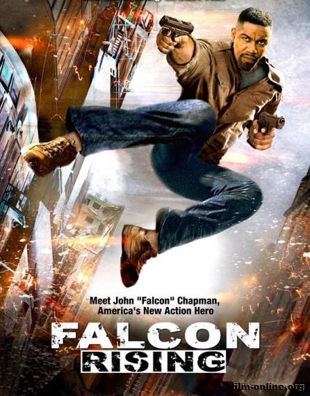 ����������� ������ / Falcon Rising (2014)