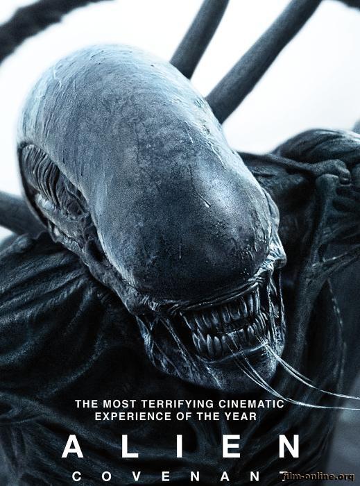 Чужой Alien 1979  КиноПоиск